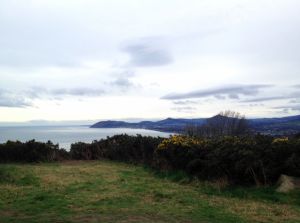 The view from Kiliney Hill...on a nice day they say you can see Wales.