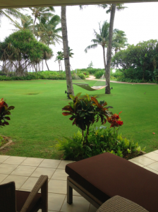 The view from the private patio in my suite.