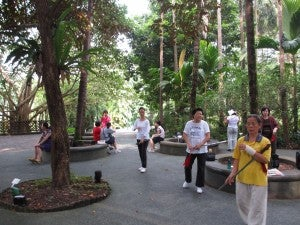 People doing morning tai chi at the entrance to the Singapore Botanical Gardens.
