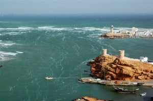 The beautiful Sur coastline in Oman.