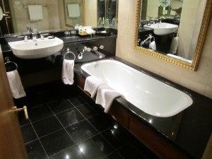 Hyatt Joburg Bathroom 1