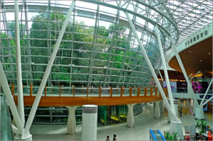 Kuala Lumper International Airport has its own forest reserve inside, located in the Satellite building.