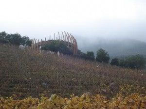 Lapostolle's dramatic showcase winery.