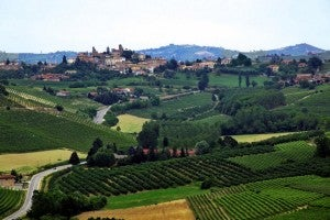 Piedmonts wine country stretches over a lush hilly landscape.