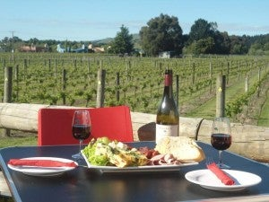 Relax over a casual gourmet lunch at Margrain's Vineyard Cafe.