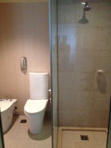 The walk-in shower and WC.