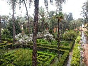 View of the Stunning Alcazar Gardens.