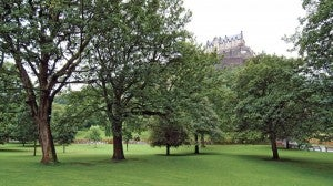 Princess Street Gardens.