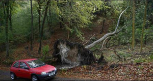 St Jude's storm has flattened some areas of Britain (Photo Credit: Reuters/Eddie Keogh).