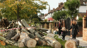 Hundreds of trees have fallen across England (Photo credit: Getty Images).