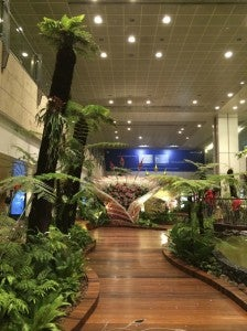 Changi is beautiful, but I was ready to go!