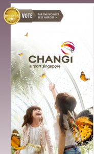 The beautiful Changi Airport in Singapore is another layover option.
