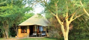 I loved the tents at Savannah Lodge in South Africa.