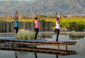 The Vines has yoga classes with a view.