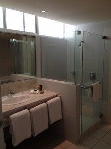Sink shower