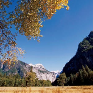 Send in a photo of your favorite national park.