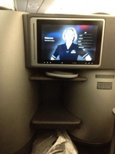The seatback monitor.