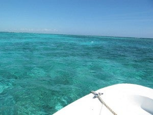 The crystal-clear waters of the Hol Chan Marine Reserve off Belize's Ambergris Caye - Photo by Melanie Wynne