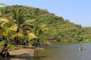 Just one of the lush tropical beaches of Goa