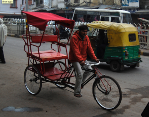 For an inexpensive trip, consider taking a rickshaw from DEL into Delhi