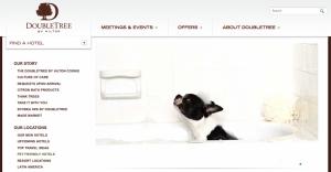 DoubleTree offers many pet-friendly properties.