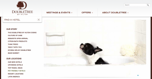 DoubleTree offers many pet-friendly properties.