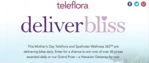 Win a trip to Hawaii with Teleflora's Deliver Bliss contest.