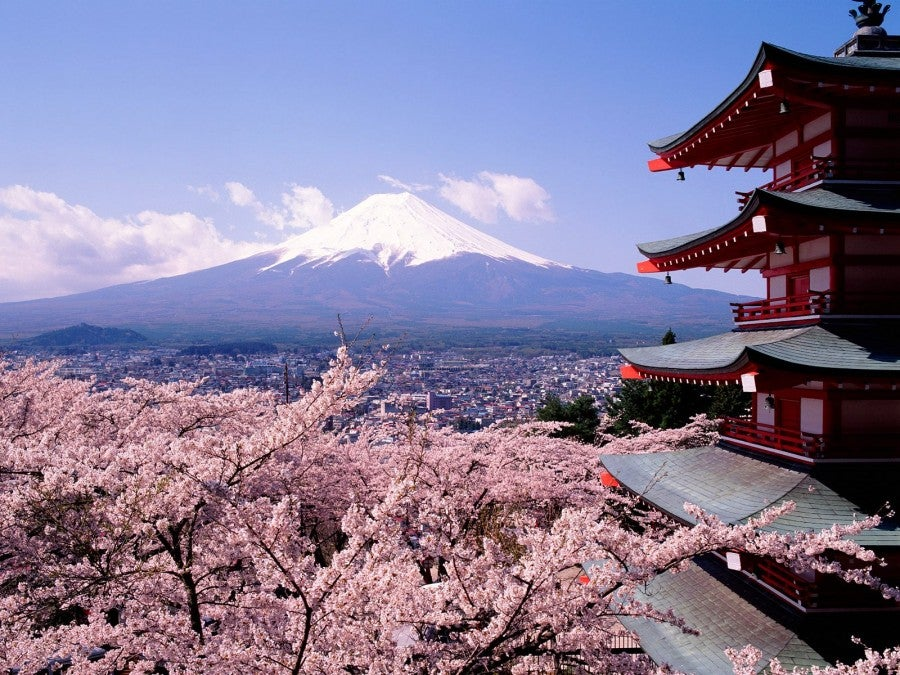 Feel like a trip to Japan this spring?