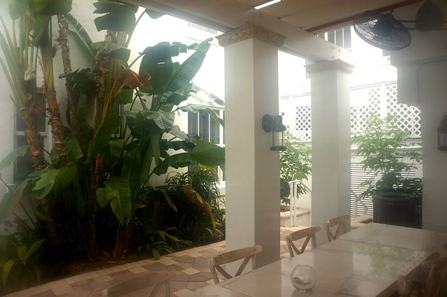 The poolside patio out back is a lovely place to enjoy breakfast - when the famous Miami humidity allows