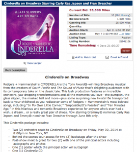 Cinderella package via the Delta SkyMiles Online Auction