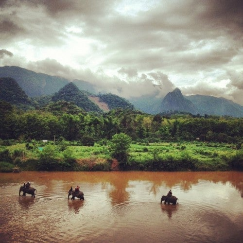Trekking with elephants at Shangri Lao.