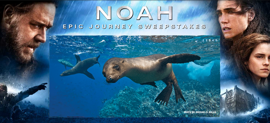 "National Geographic's ""Noah Epic Journey"" Sweepstakes is giving away a 10-day trip for two to the Galapagos"
