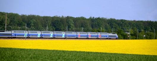 TGV in Fontainebleau