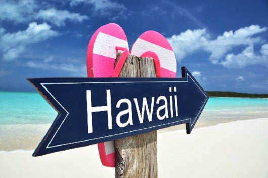 Best Transfer Partners For Flights To Hawaii The Points Guy