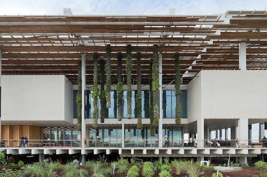 PAMM is not to be missed on a trip to Miami. Photo by Iwan Baan