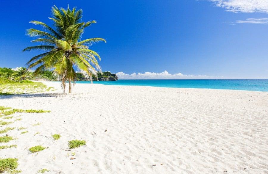 Win a trip to Barbados
