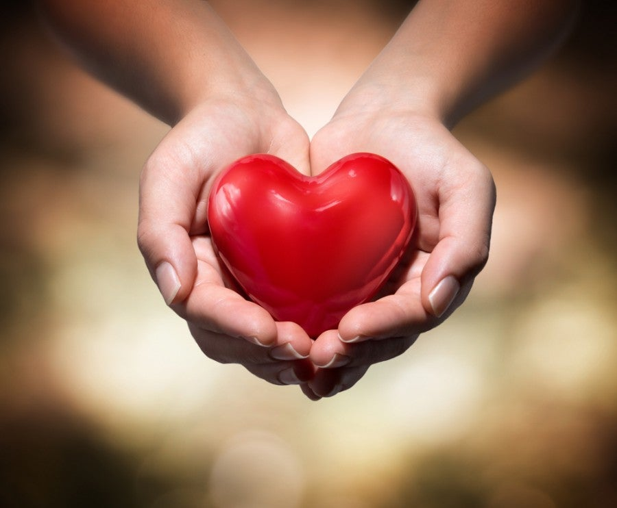 Heart charity donation Shutterstock 155219123