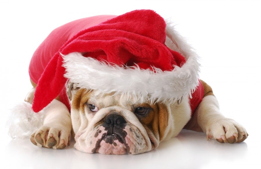 Avoid long faces and holiday disappointment by packing ALL gifts in your carry on. Photo courtesy of Shutterstock.