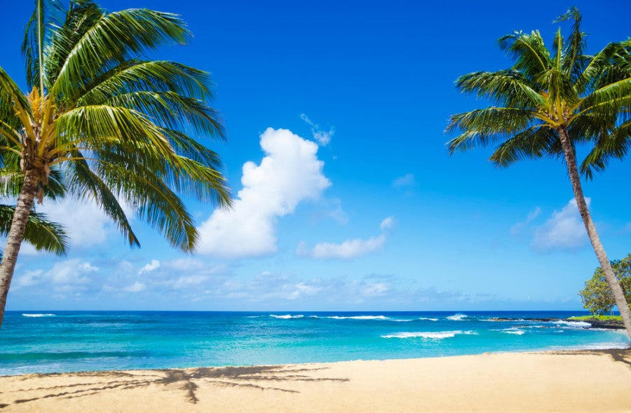 Enjoy a beach vacation to Hawaii. Photo courtesy of Shutterstock.
