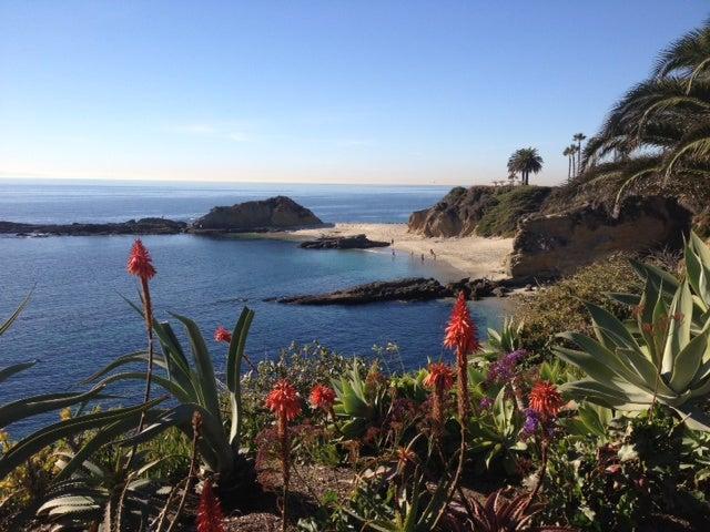 By The Sea Laguna Beach California