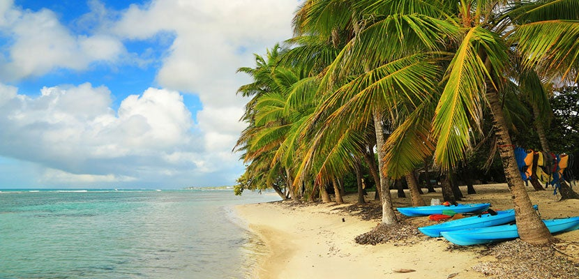 Guadelopue-featured