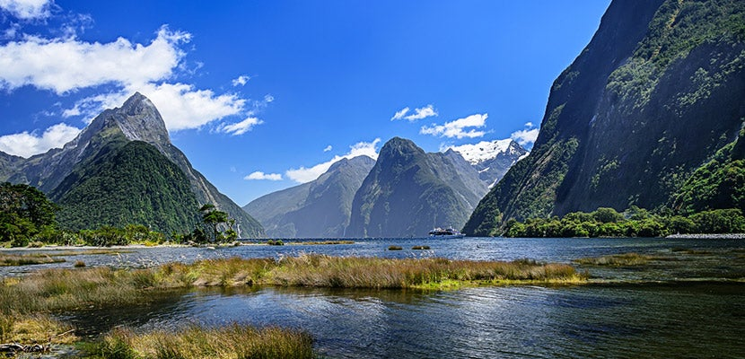 NZ-featured