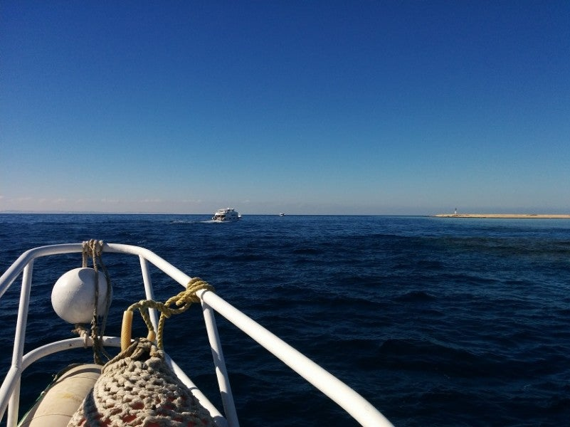 En route to the dive site in Sharm.
