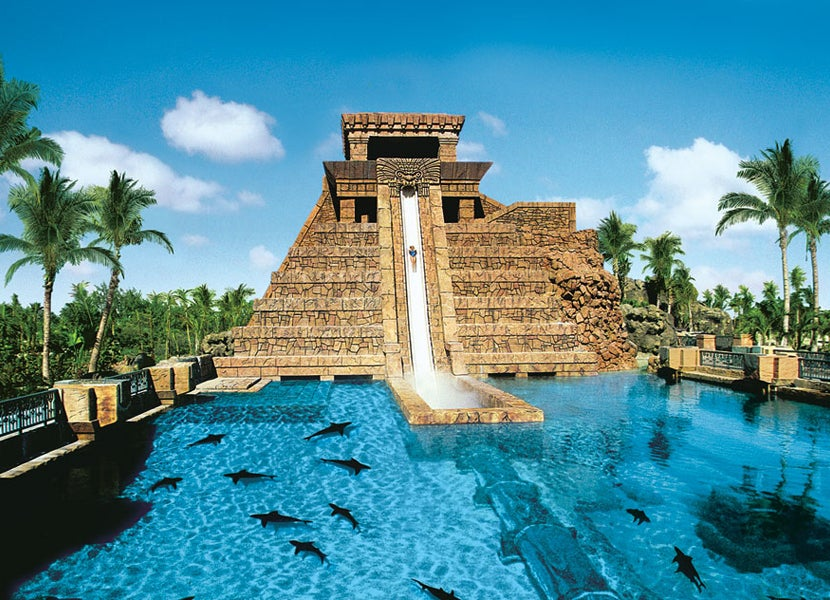 The Famous Six Story Drop Through Shark Tank At Atlantis Image Courtesy Of